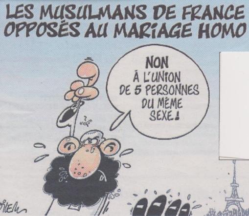 matrimonio-homo