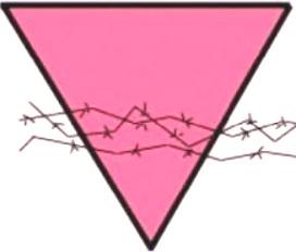 triangolo rosa