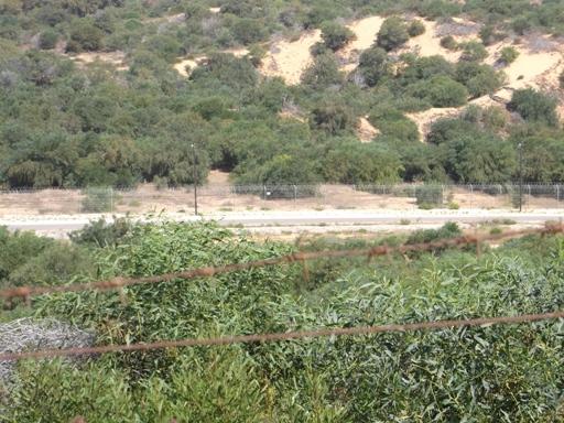 recinzione 1