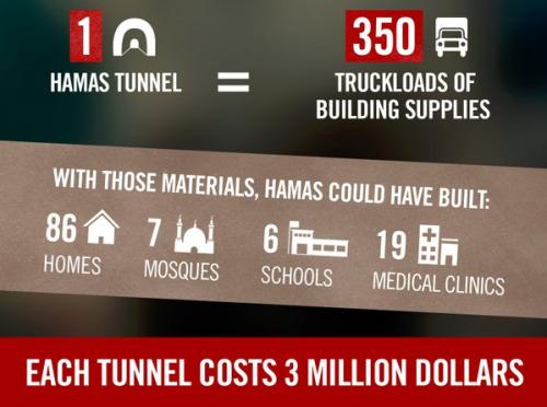 tunnel costo