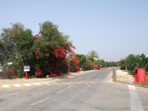 paesaggio 5