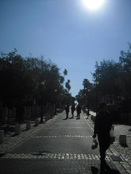 strada principale 2