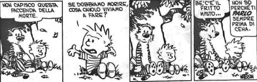 Calvin1b