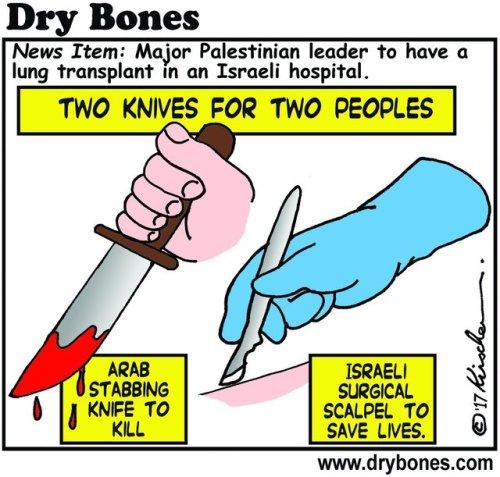 2 coltelli