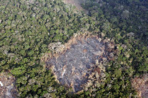 AMAZZONIAvedutadeforestazione