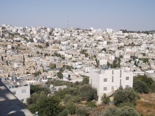Hebron 6