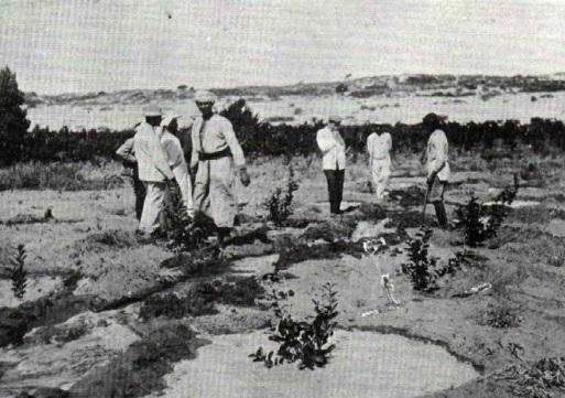 Petah Tikva 1905