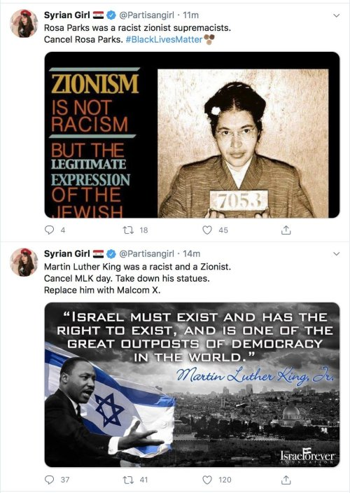 suprematisti sionisti