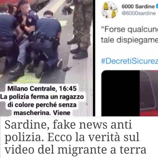 sardine fake